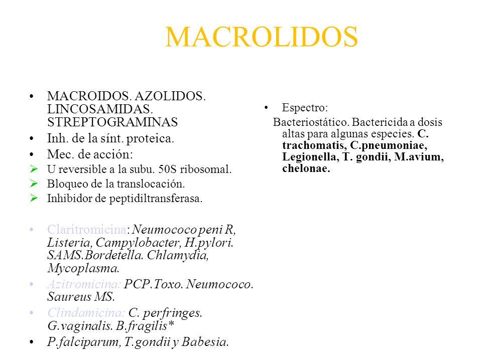 MACROLIDOS MACROIDOS. AZOLIDOS. LINCOSAMIDAS. STREPTOGRAMINAS