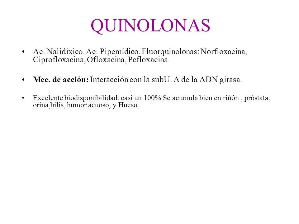 QUINOLONASAc. Nalidíxico. Ac. Pipemídico. Fluorquinolonas: Norfloxacina, Ciprofloxacina, Ofloxacina, Pefloxacina.