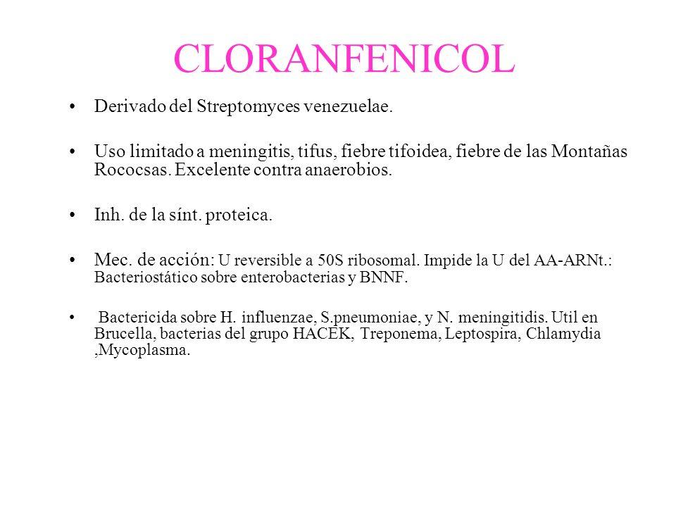 CLORANFENICOL Derivado del Streptomyces venezuelae.