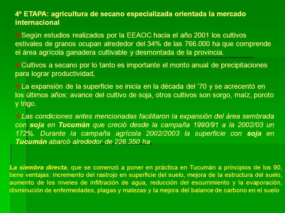 4º ETAPA: agricultura de secano especializada orientada la mercado internacional