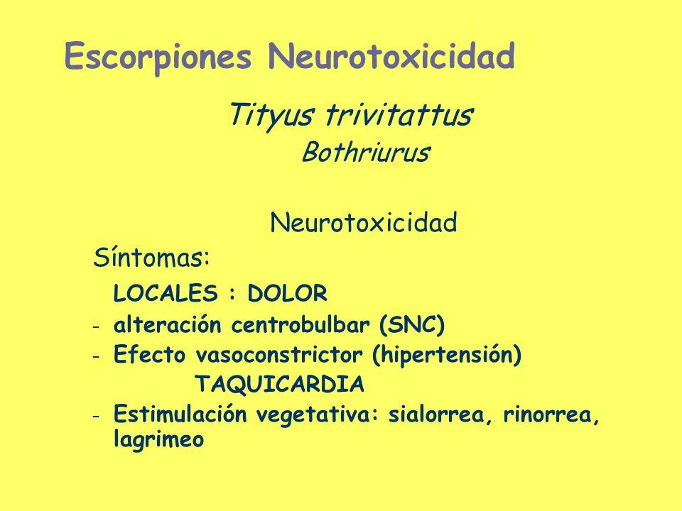 Escorpiones Neurotoxicidad