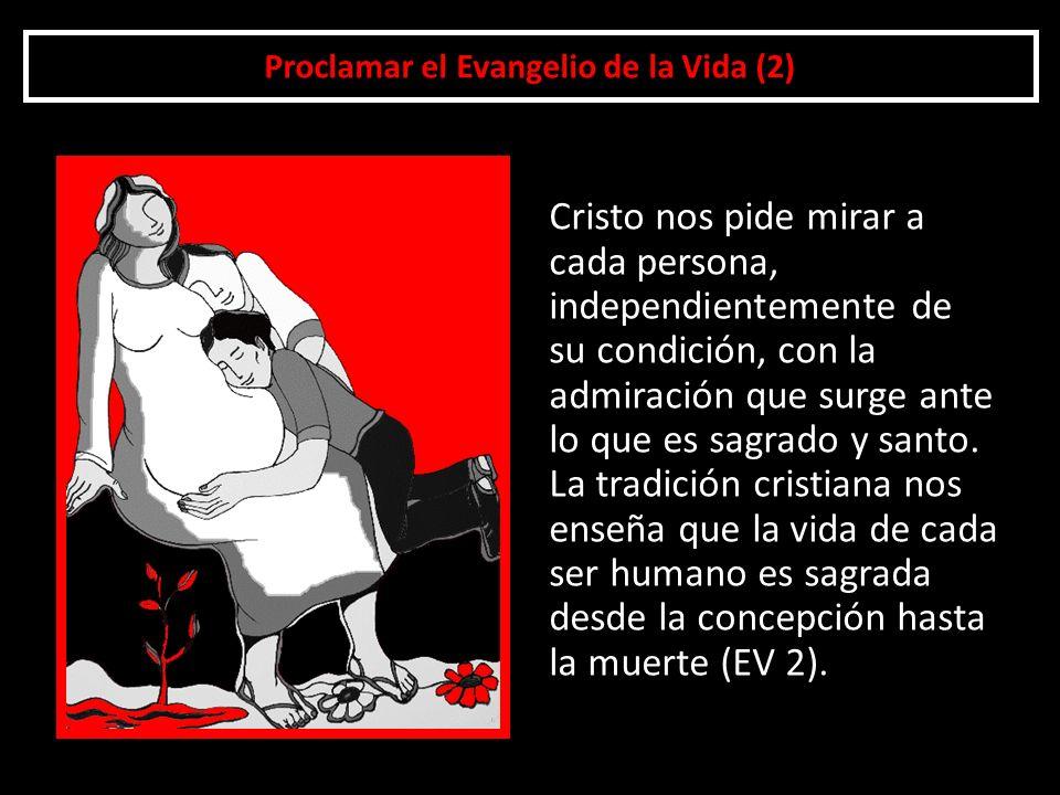 Proclamar el Evangelio de la Vida (2)