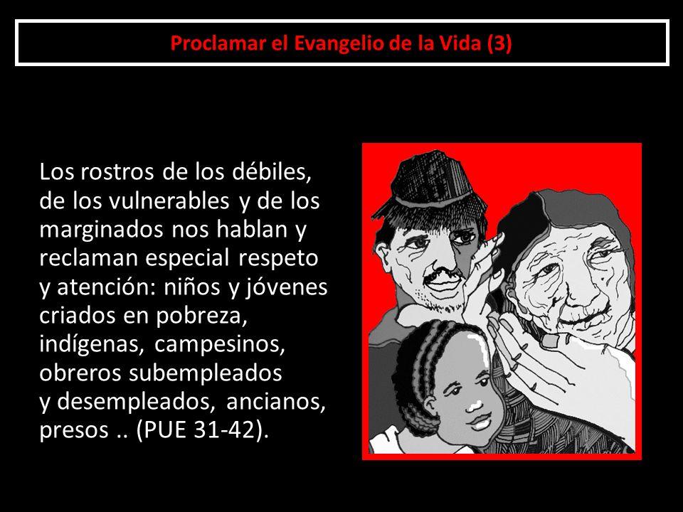 Proclamar el Evangelio de la Vida (3)