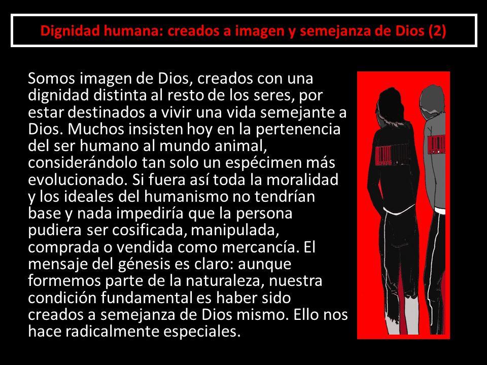 Dignidad humana: creados a imagen y semejanza de Dios (2)