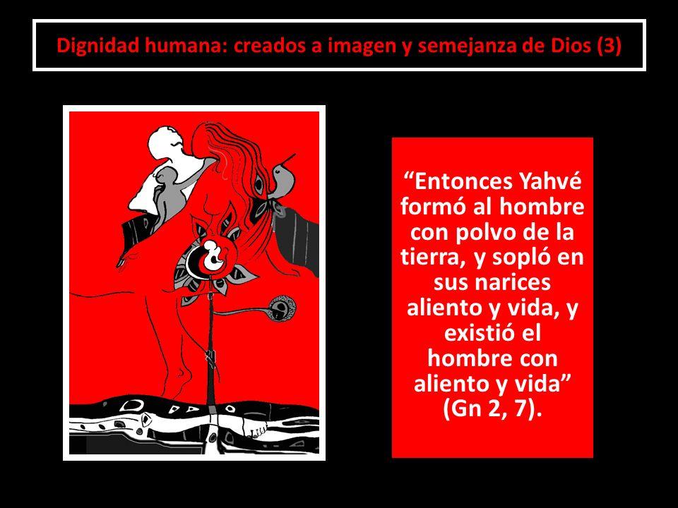 Dignidad humana: creados a imagen y semejanza de Dios (3)
