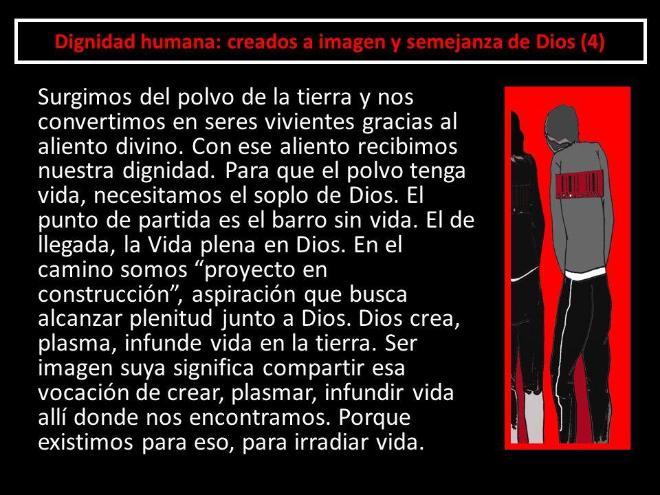 Dignidad humana: creados a imagen y semejanza de Dios (4)