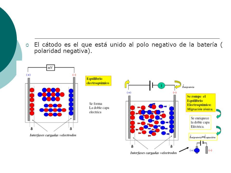 El cátodo es el que está unido al polo negativo de la batería ( polaridad negativa).