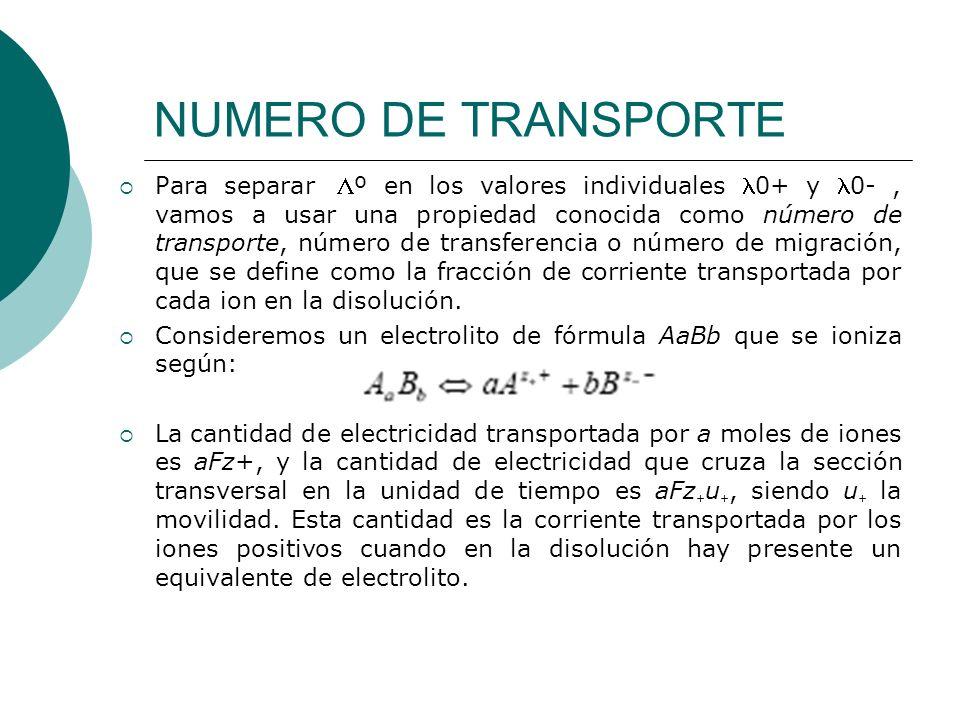 NUMERO DE TRANSPORTE