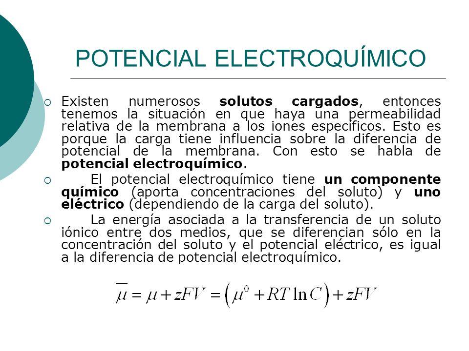 POTENCIAL ELECTROQUÍMICO