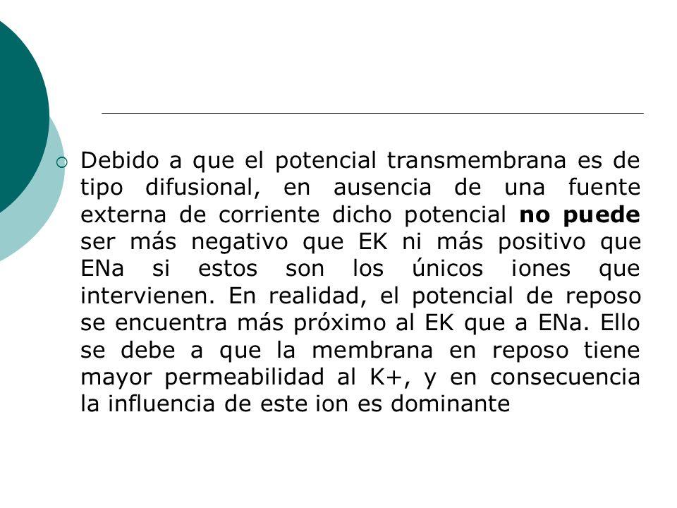 Debido a que el potencial transmembrana es de tipo difusional, en ausencia de una fuente externa de corriente dicho potencial no puede ser más negativo que EK ni más positivo que ENa si estos son los únicos iones que intervienen.