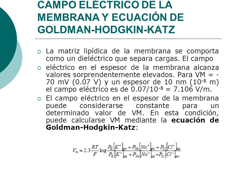 CAMPO ELÉCTRICO DE LA MEMBRANA Y ECUACIÓN DE GOLDMAN-HODGKIN-KATZ