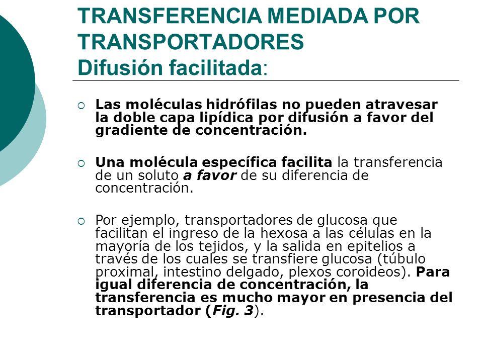 TRANSFERENCIA MEDIADA POR TRANSPORTADORES Difusión facilitada: