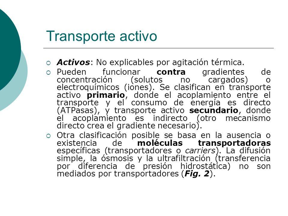 Transporte activo Activos: No explicables por agitación térmica.