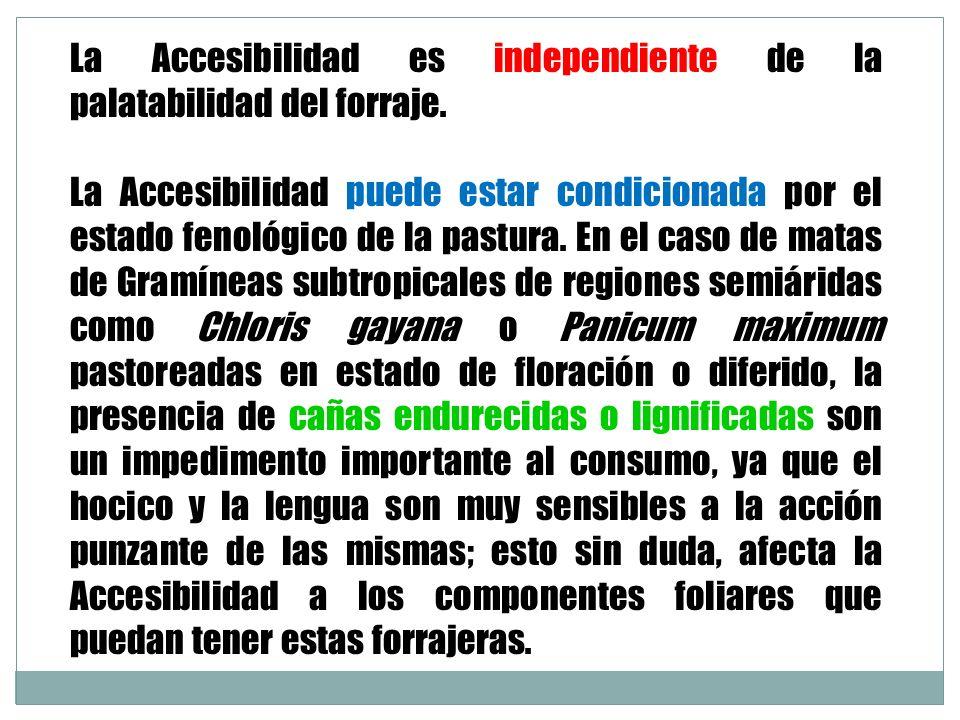 La Accesibilidad es independiente de la palatabilidad del forraje.
