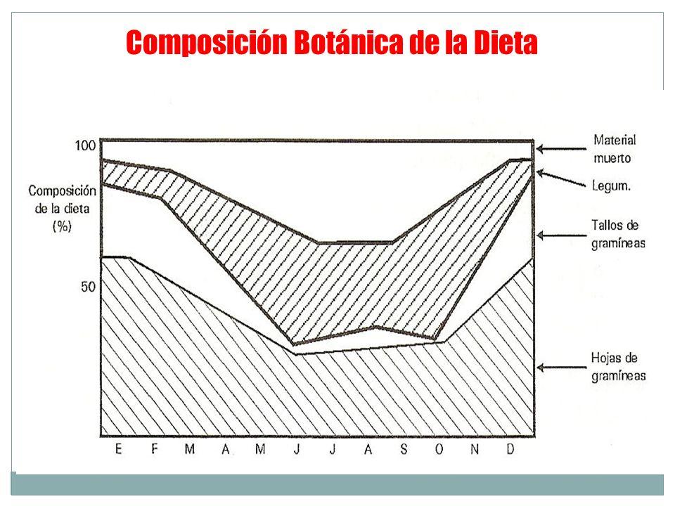 Composición Botánica de la Dieta
