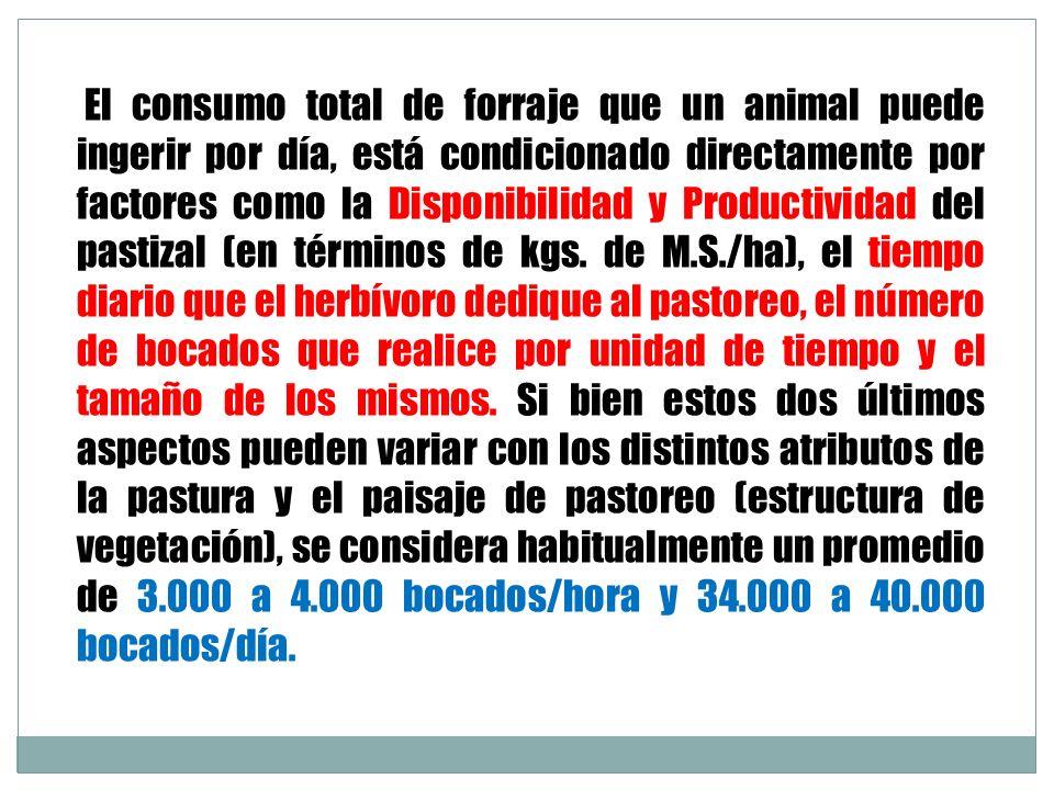 El consumo total de forraje que un animal puede ingerir por día, está condicionado directamente por factores como la Disponibilidad y Productividad del pastizal (en términos de kgs.