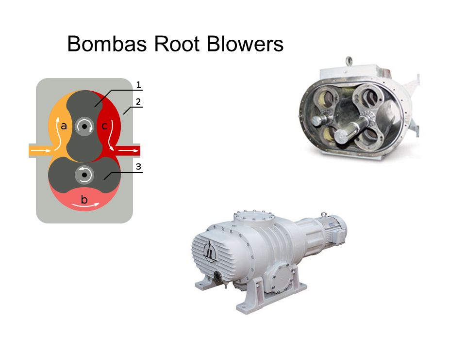 Bombas Root Blowers