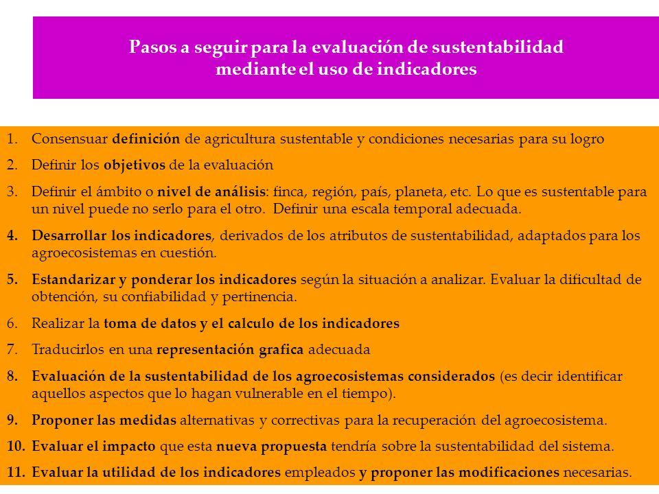 Pasos a seguir para la evaluación de sustentabilidad mediante el uso de indicadores