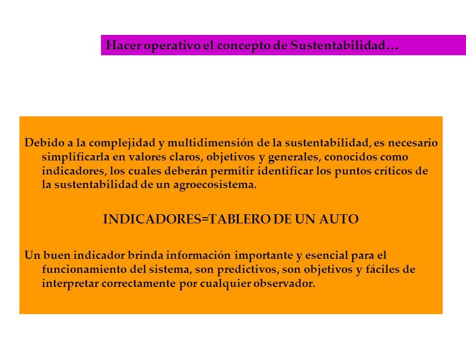 INDICADORES=TABLERO DE UN AUTO