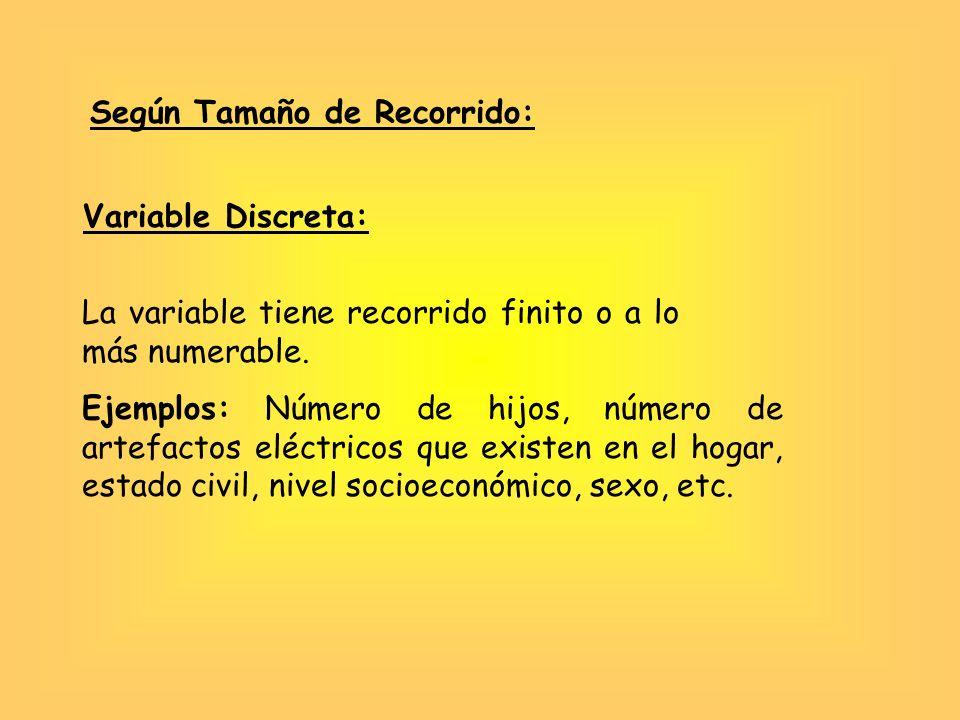 Según Tamaño de Recorrido:
