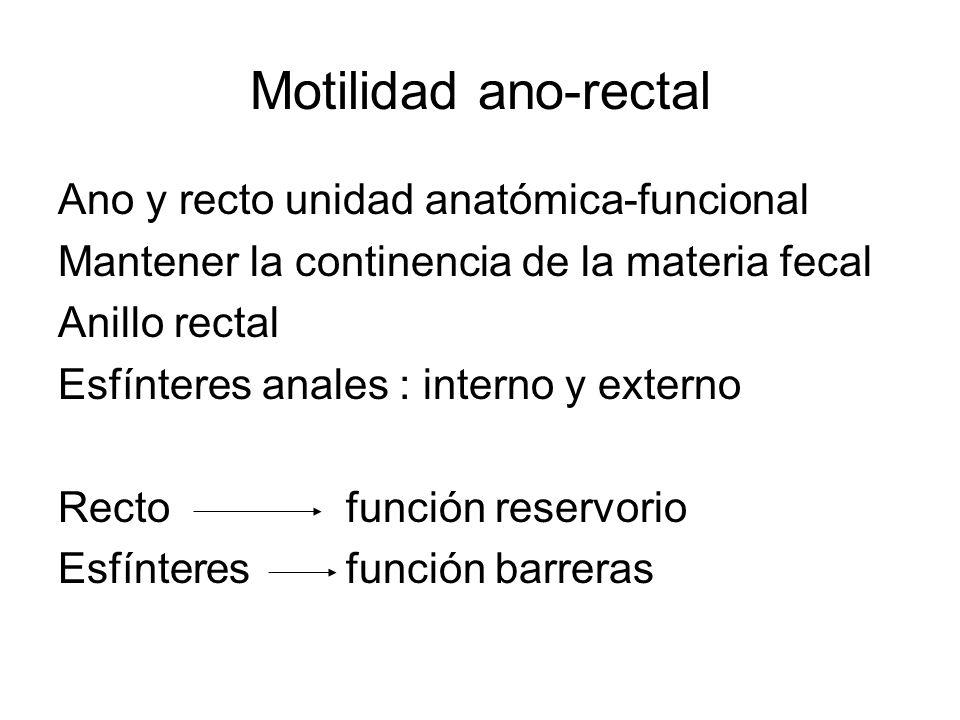 Motilidad ano-rectal Ano y recto unidad anatómica-funcional