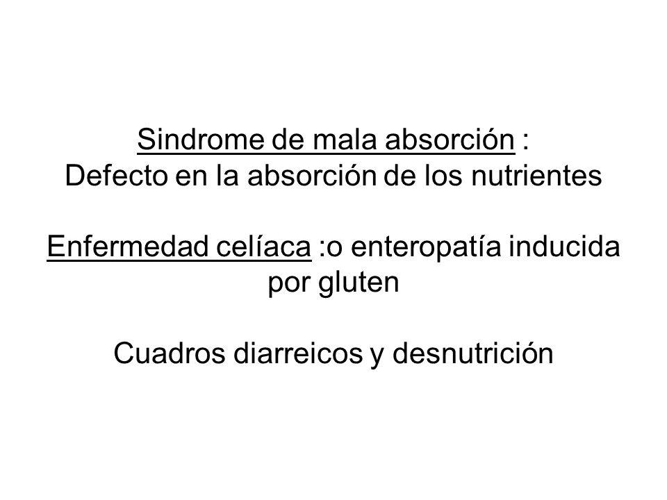 Sindrome de mala absorción : Defecto en la absorción de los nutrientes Enfermedad celíaca :o enteropatía inducida por gluten Cuadros diarreicos y desnutrición