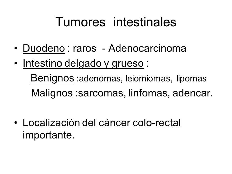 Tumores intestinales Duodeno : raros - Adenocarcinoma