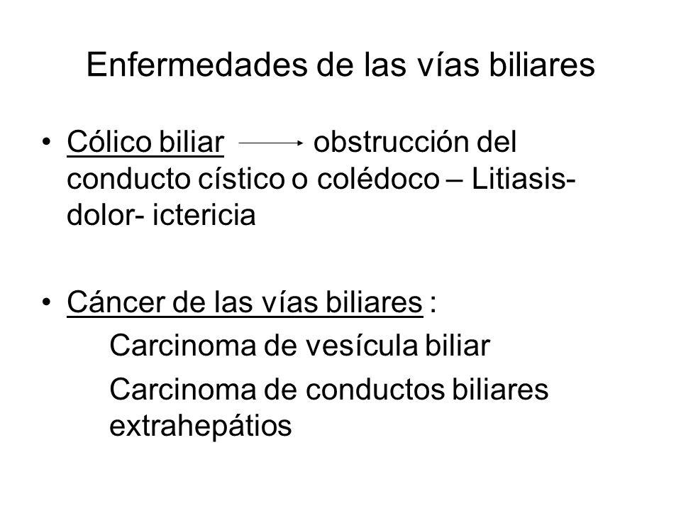 Enfermedades de las vías biliares
