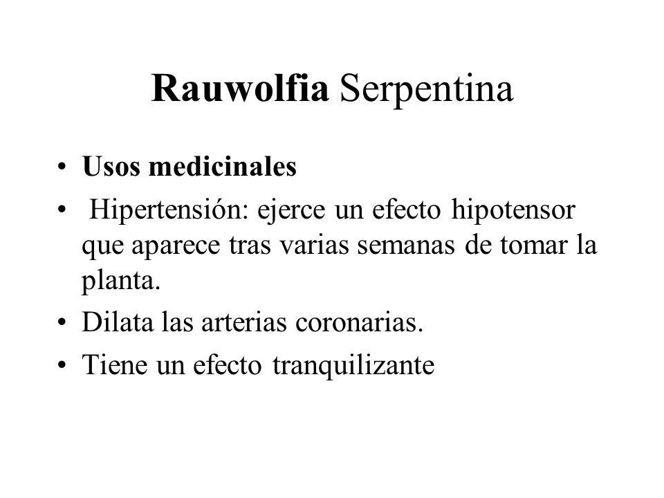 Rauwolfia Serpentina Usos medicinales