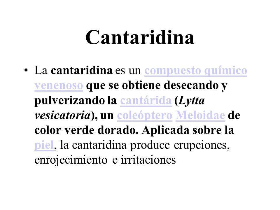 Cantaridina