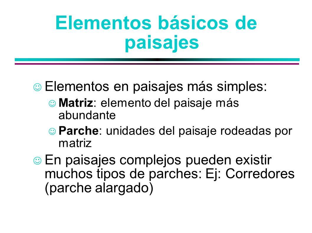 Elementos básicos de paisajes