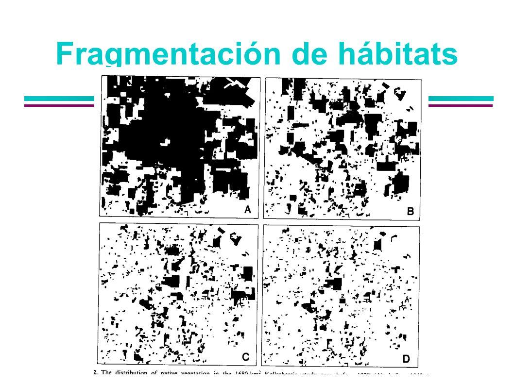 Fragmentación de hábitats