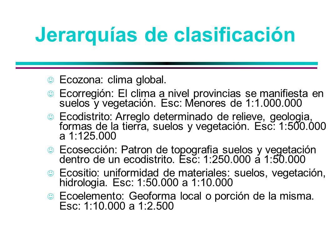 Jerarquías de clasificación