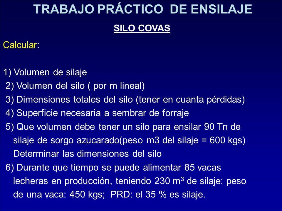 TRABAJO PRÁCTICO DE ENSILAJE