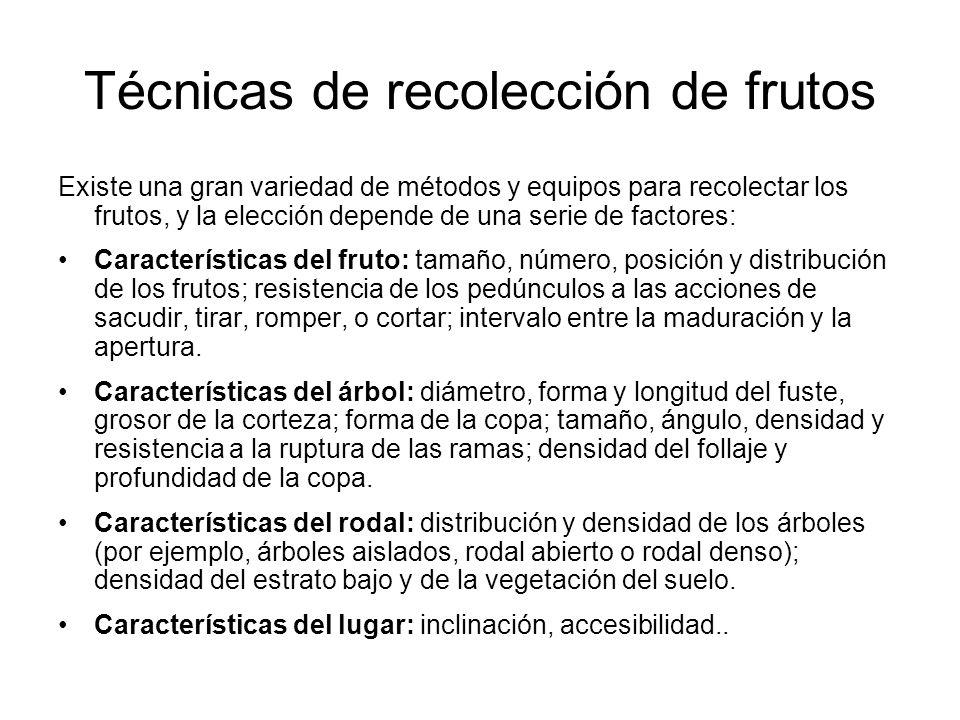 Técnicas de recolección de frutos