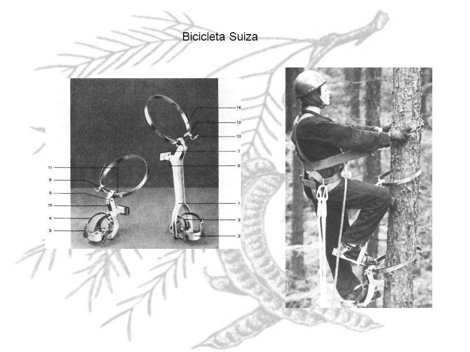Bicicleta Suiza