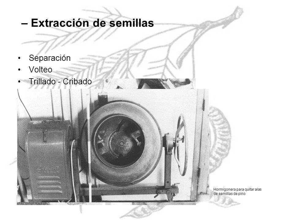 – Extracción de semillas