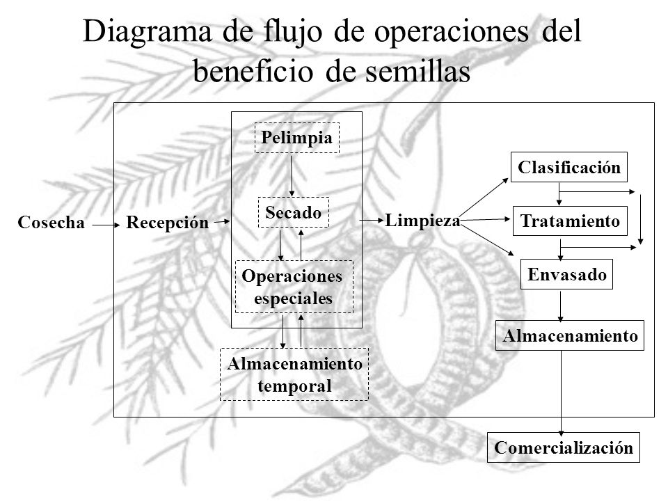 Diagrama de flujo de operaciones del beneficio de semillas