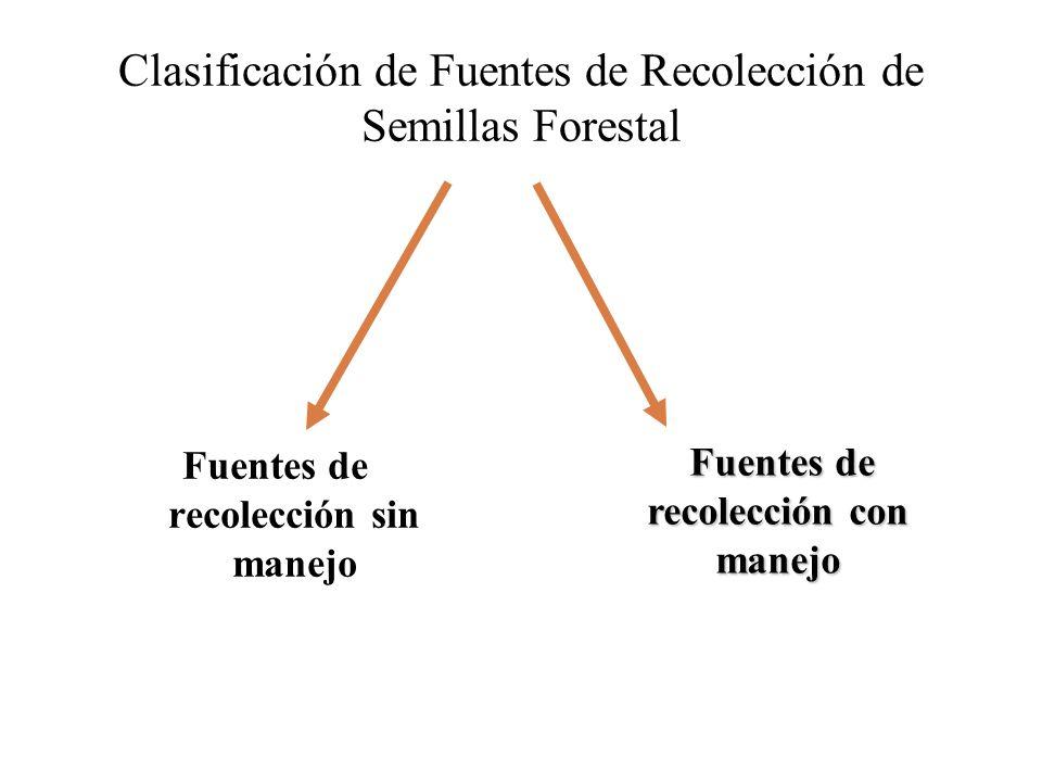 Clasificación de Fuentes de Recolección de Semillas Forestal