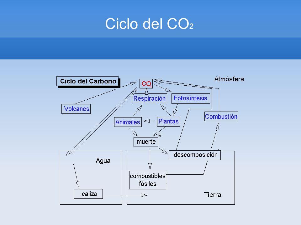 Ciclo del CO2