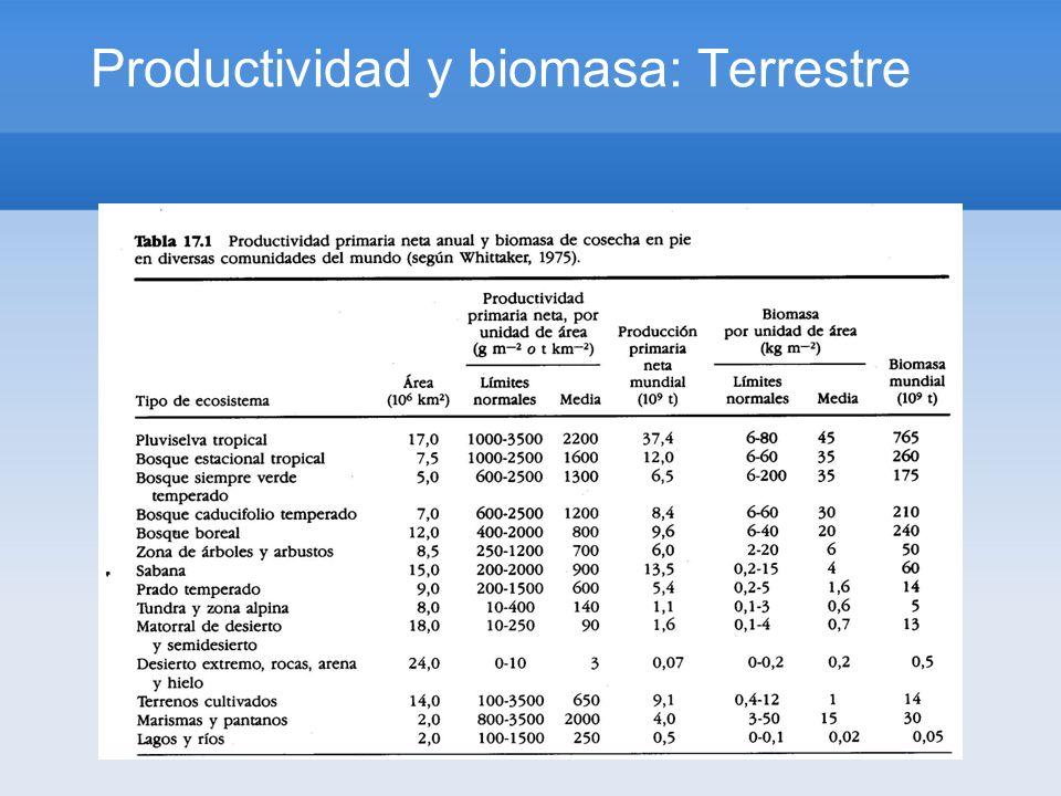 Productividad y biomasa: Terrestre