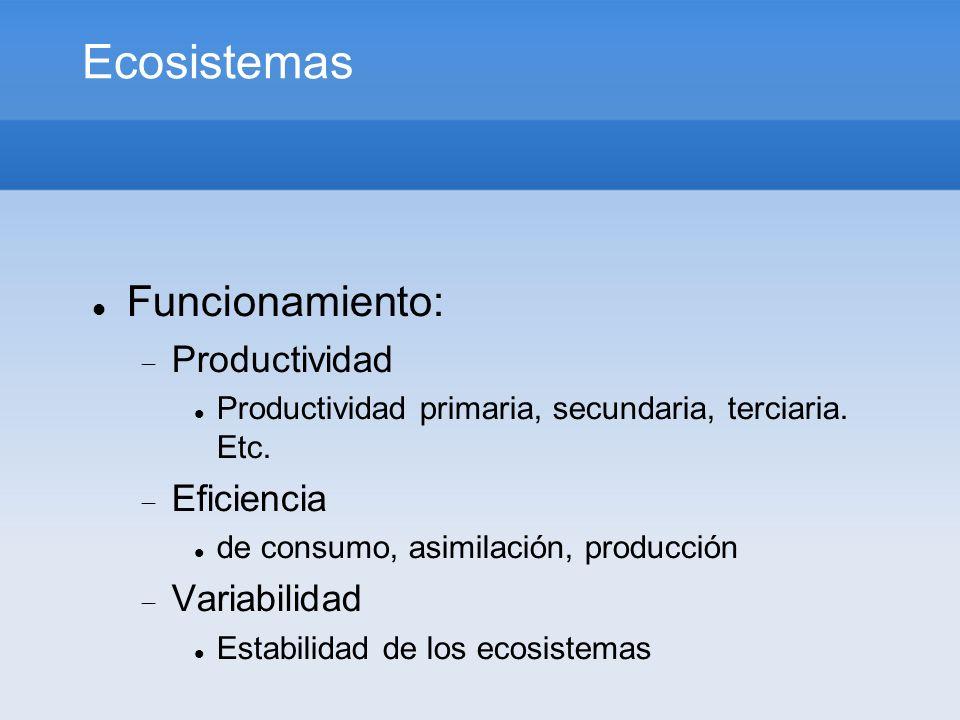 Ecosistemas Funcionamiento: Productividad Eficiencia Variabilidad