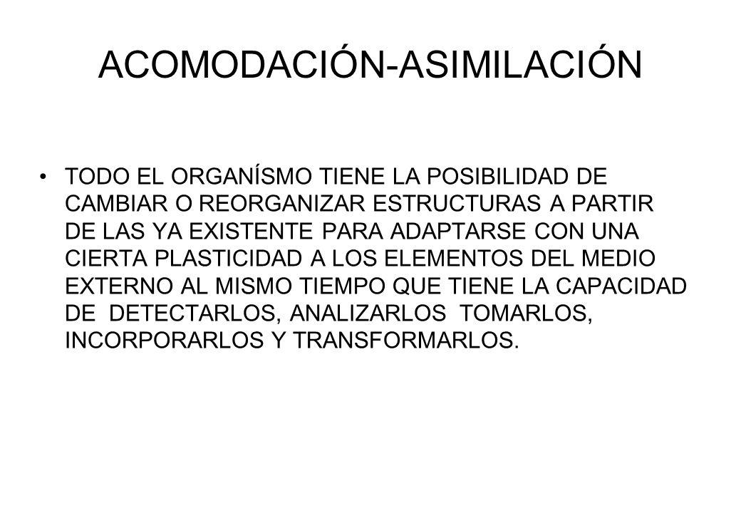 ACOMODACIÓN-ASIMILACIÓN