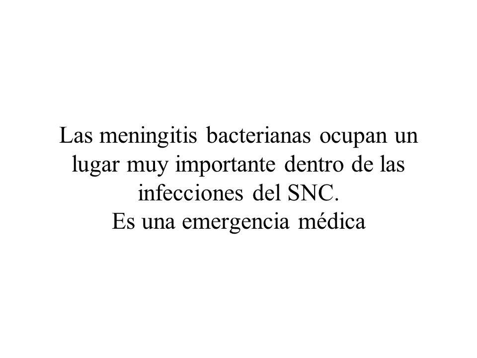 Las meningitis bacterianas ocupan un lugar muy importante dentro de las infecciones del SNC.