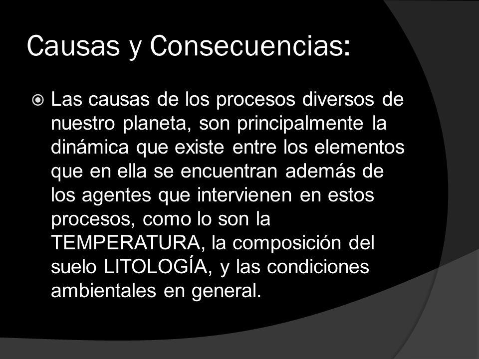 Causas y Consecuencias: