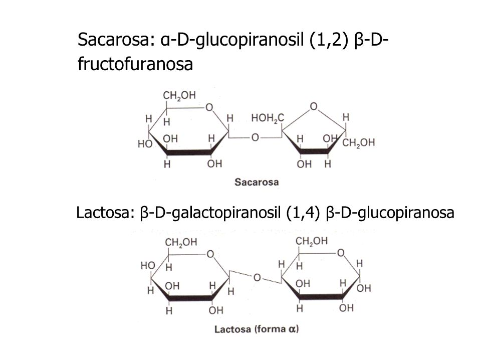 Sacarosa: α-D-glucopiranosil (1,2) β-D-fructofuranosa