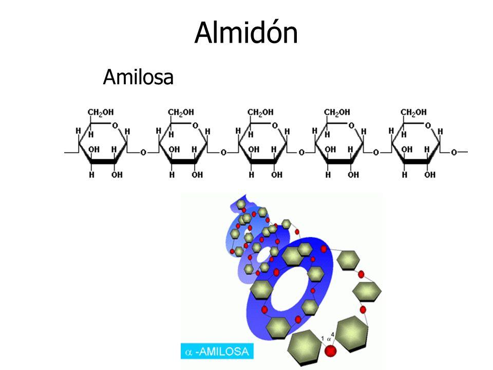 Almidón Amilosa