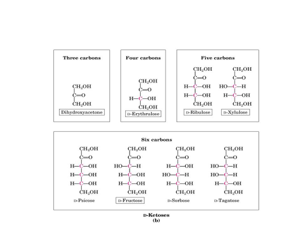 Nombres y las proyecciones de Fischer de tetrosas, pentosas y hexosas generadas a partir de la di-hidroxicetona