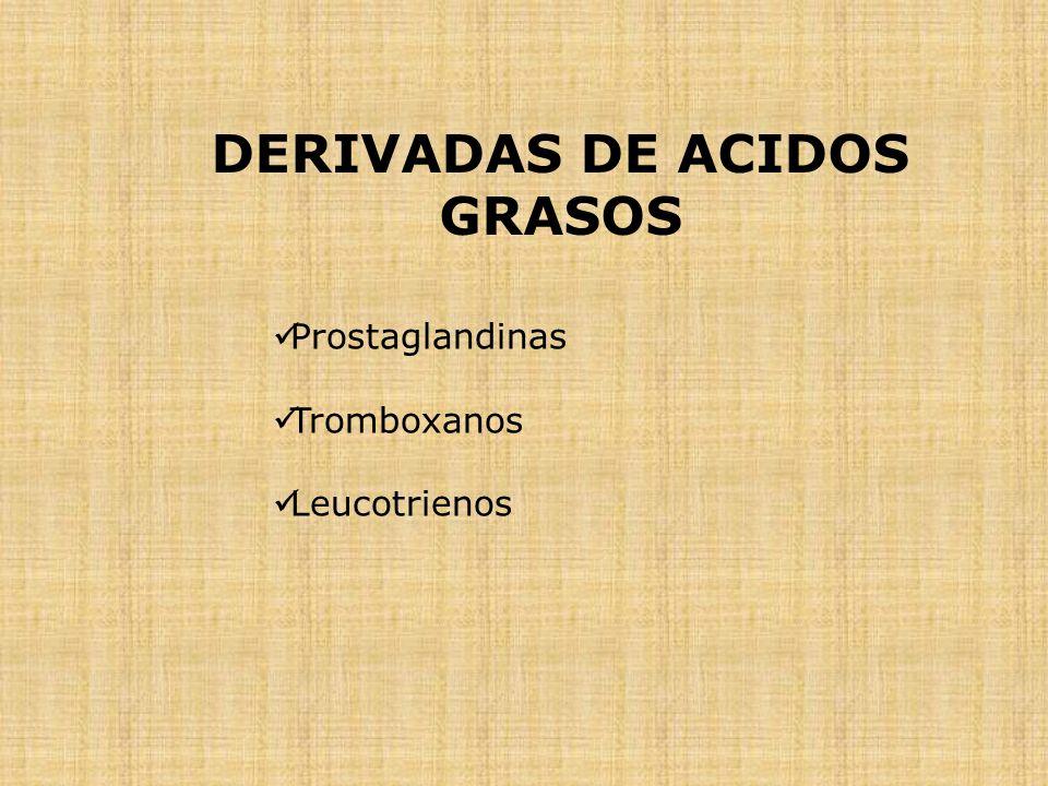 DERIVADAS DE ACIDOS GRASOS