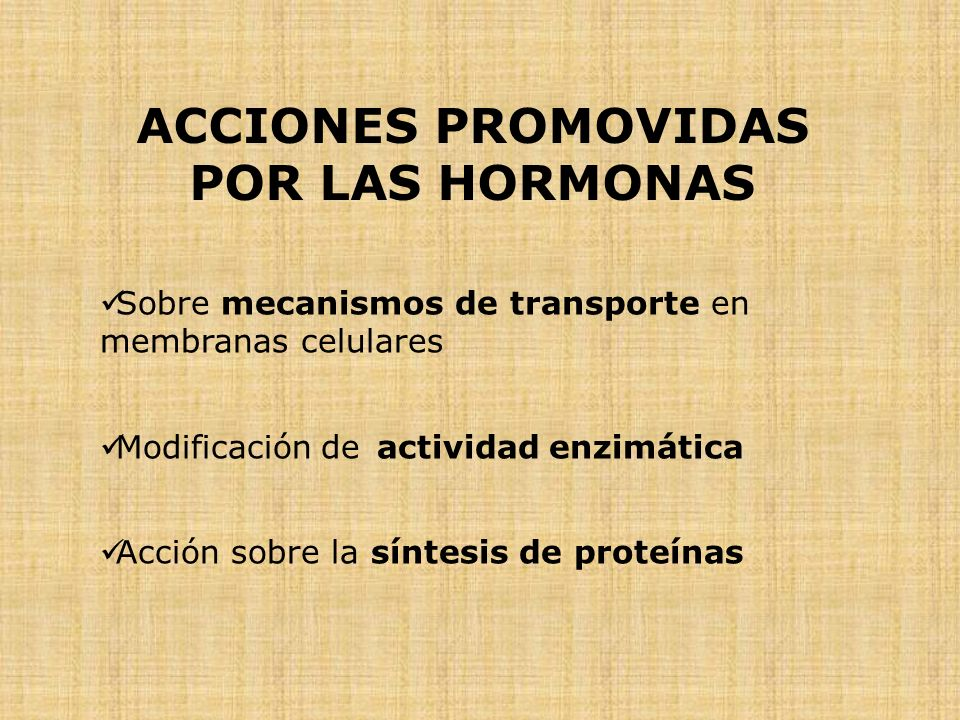 ACCIONES PROMOVIDAS POR LAS HORMONAS